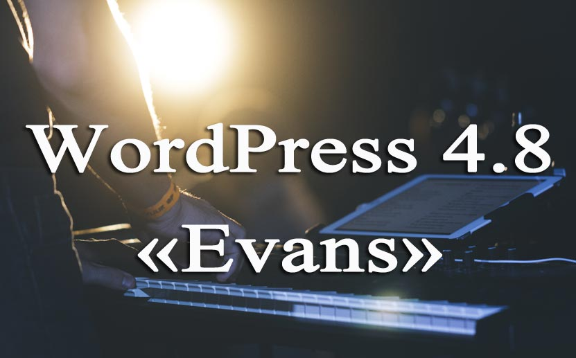 wordpress 4 8